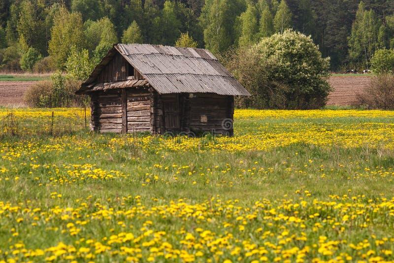 Haus auf dem Gebiet stockbilder