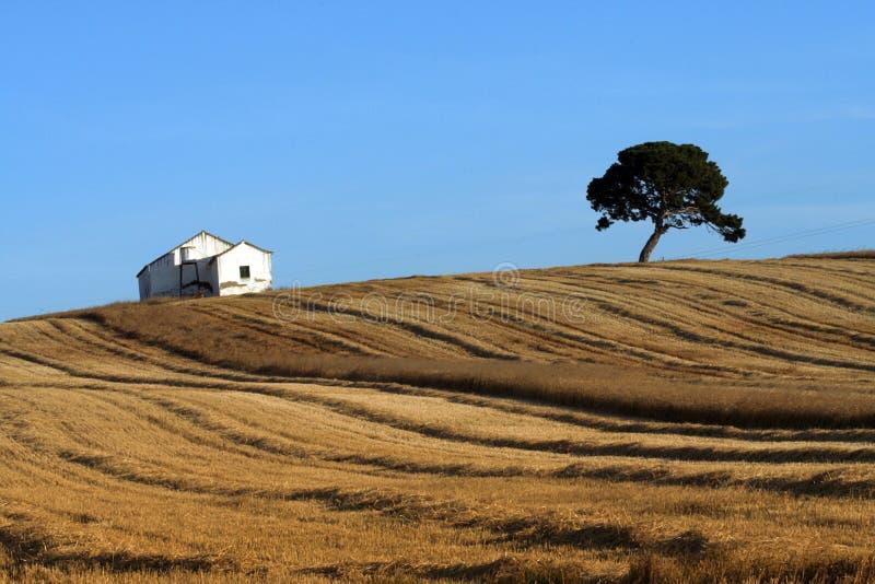 Haus auf einem spanischen Hügel stockbild