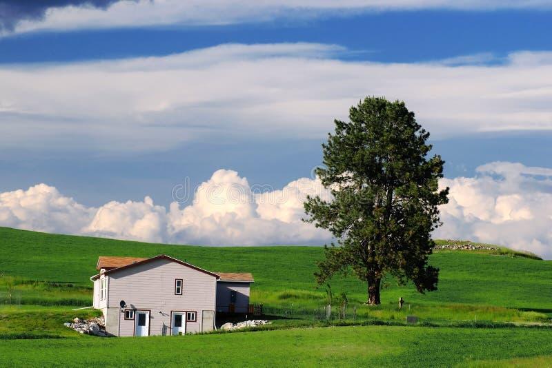 Haus in der Landschaft lizenzfreie stockfotos