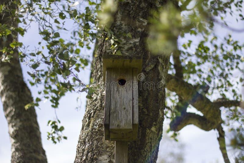 Haus für Vögel stockbild