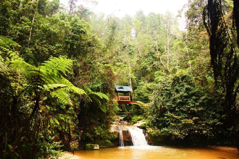 Haus im Dschungel über einem Wasserfall lizenzfreie stockfotografie