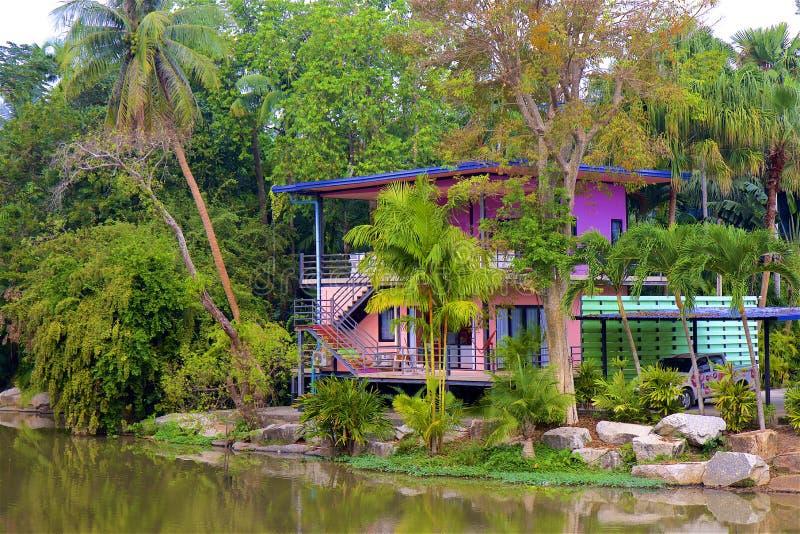 Haus im Dschungel stockfotografie