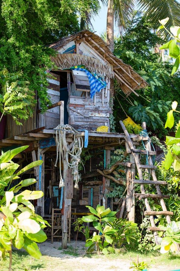 Haus im Dschungel stockfotos