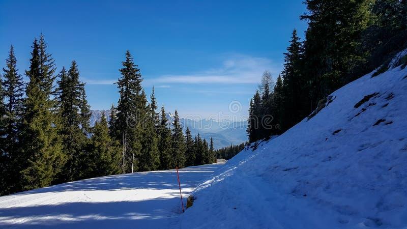 Haus im Ennstal, Steiermark/Österreich - 31. März 2017: Blick auf die blaue Piste und Wanderweg auf einem schneebedeckten Hauser  stockfoto
