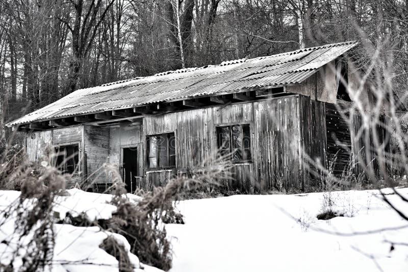 Haus im Wald stockfotos