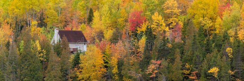 Haus im Wald in Kanada lizenzfreie stockfotos