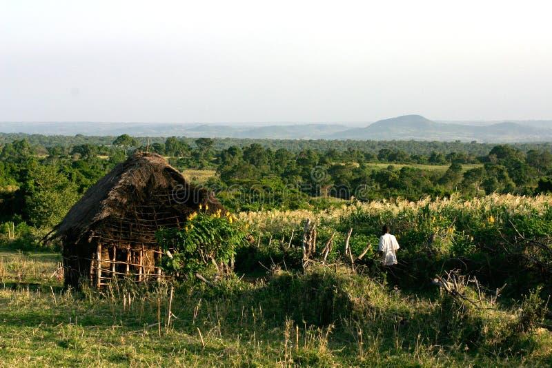 Haus In Kenia Stockbild