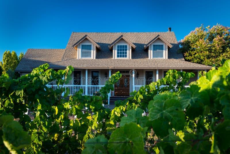 Haus mit den Weinreben, die im Vorgarten wachsen stockfotografie