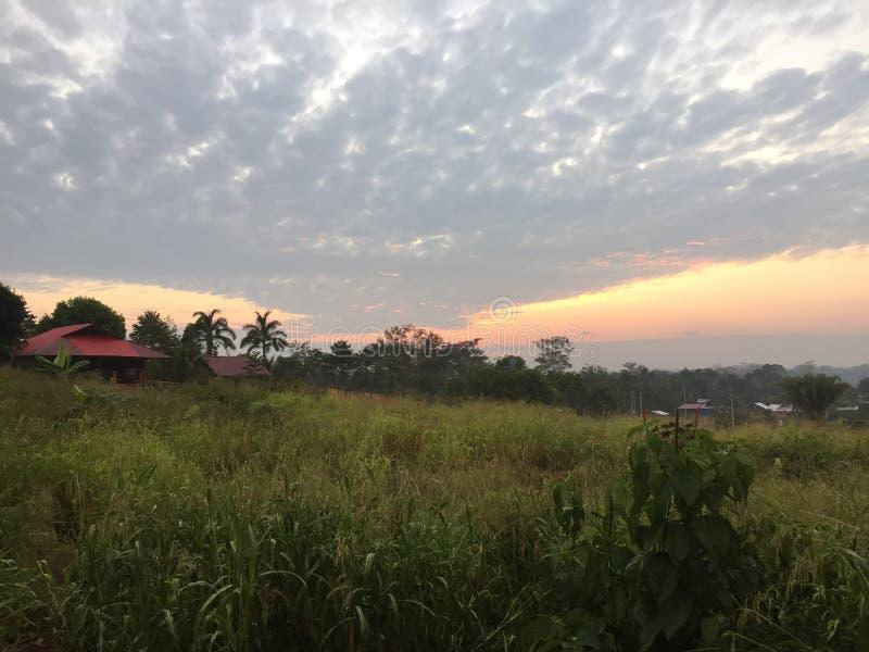 Haus morgens des Sommers stockbild