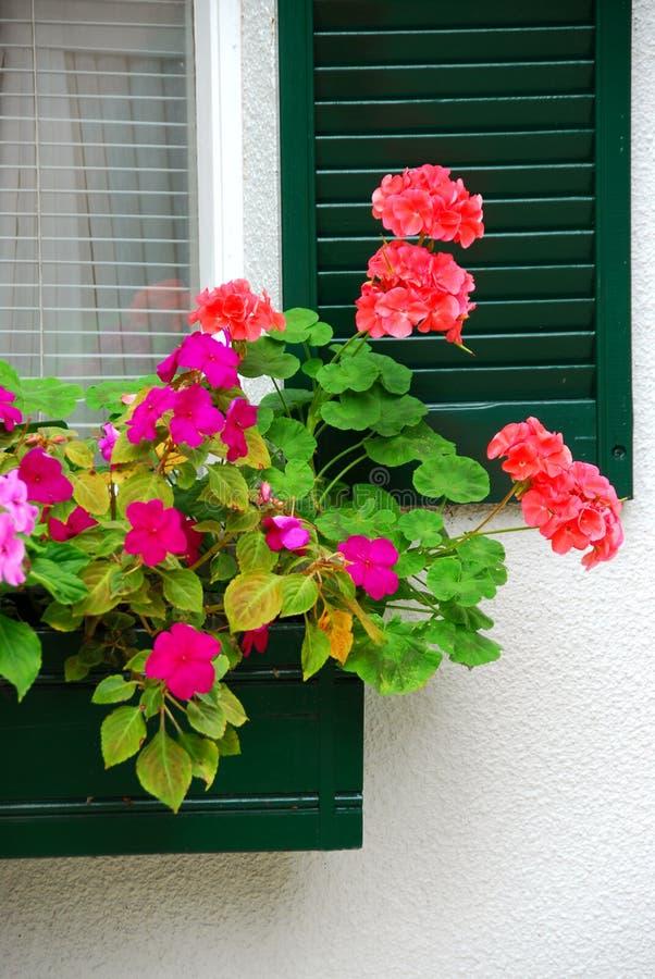 Hausblumenkasten stockfotografie