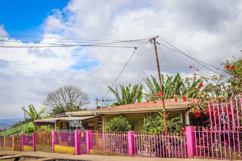 Haushimmelblau-Rosahaus Mittelamerika stockfotos