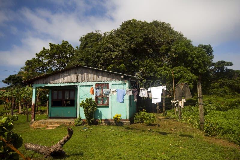Hausmaisinsel Nicaragua stockbilder