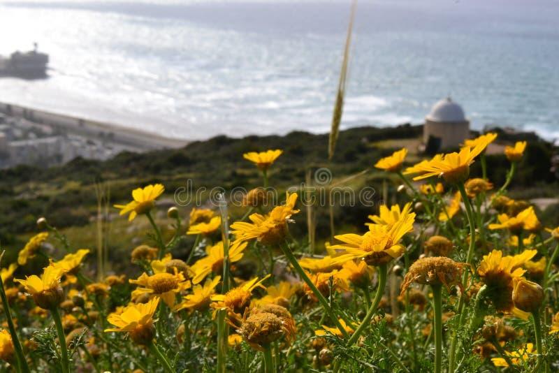 Hausse à Stella Maris à Haïfa au printemps, en Israël - chemin fleuri et chapelle sainte de famille sur le mont Carmel photographie stock
