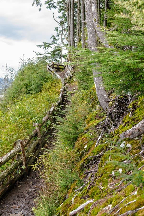 Hausse ascendante boueuse en Alaska image libre de droits