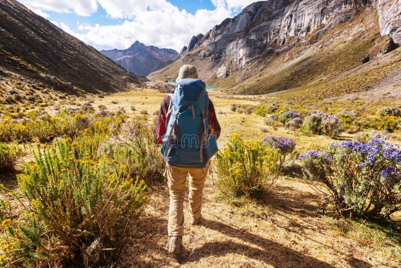 Hausse au Pérou images stock