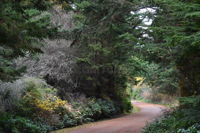 Hausse autour du parc d'état d'Ebey de fort, WA photos stock