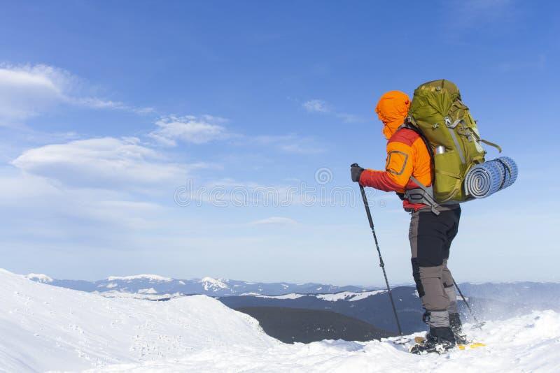 Hausse d'hiver photo libre de droits