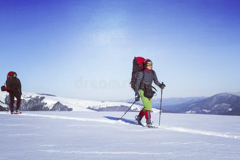 Hausse d'hiver photographie stock libre de droits