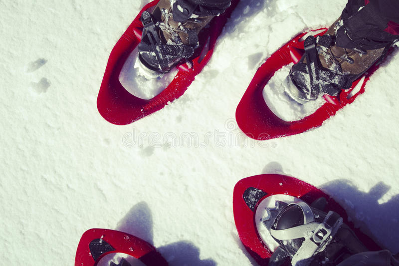 Hausse d'hiver photos stock