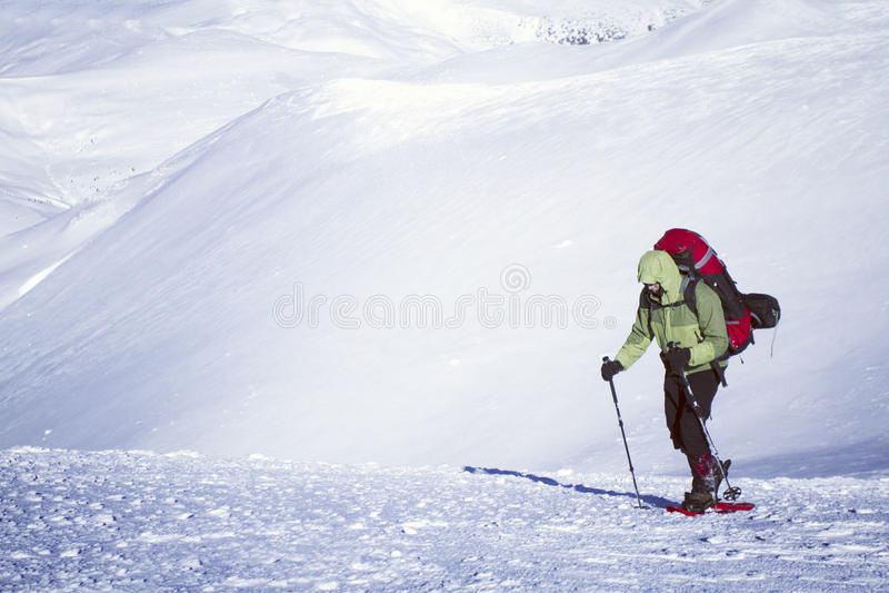 Hausse d'hiver photo stock
