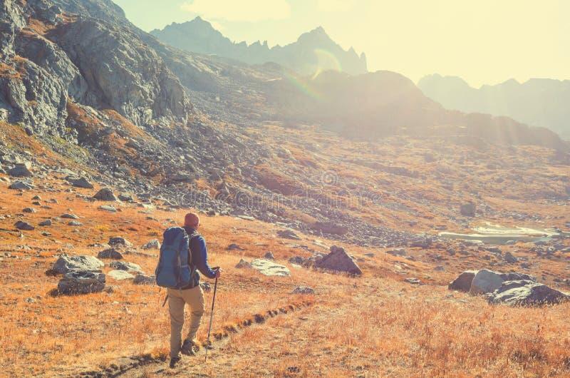 Hausse dans la saison d'automne photographie stock libre de droits