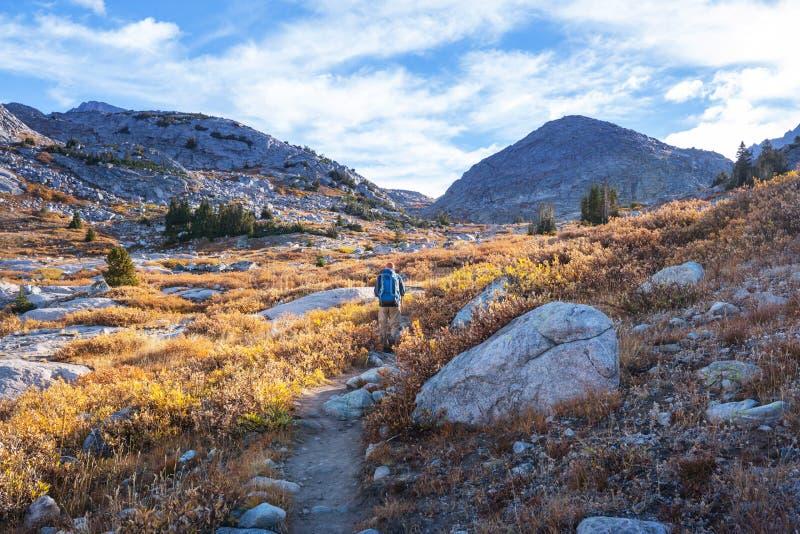 Hausse dans la saison d'automne photos libres de droits