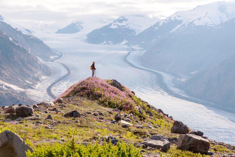Hausse dans le Canada images libres de droits