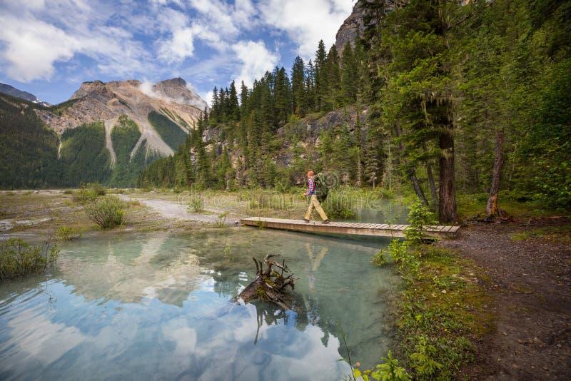 Hausse dans le Canada photo stock