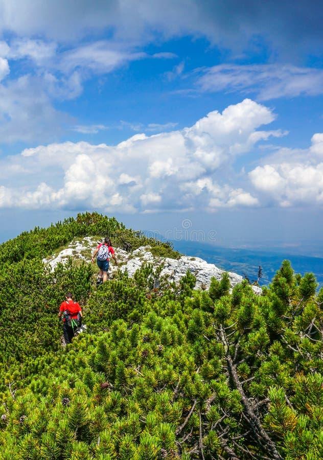Hausse dans les montagnes pendant l'été photos libres de droits