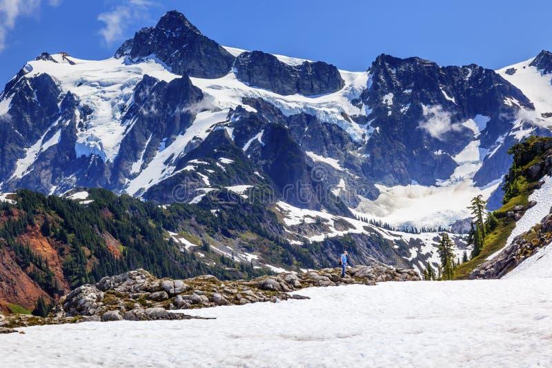 Hausse de l'artiste Point Glaciers Mount Shuksan Washington de champs de neige image libre de droits