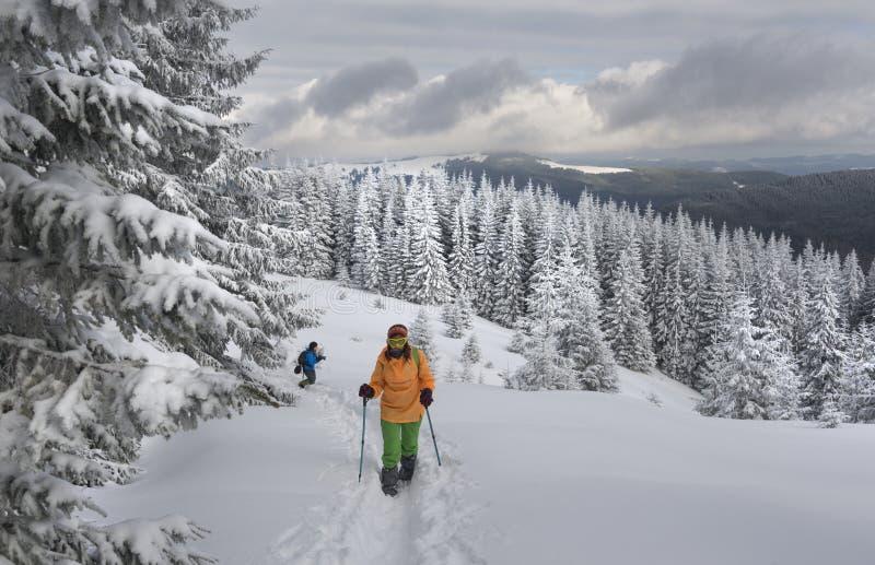 hausse de l'hiver de montagnes image libre de droits