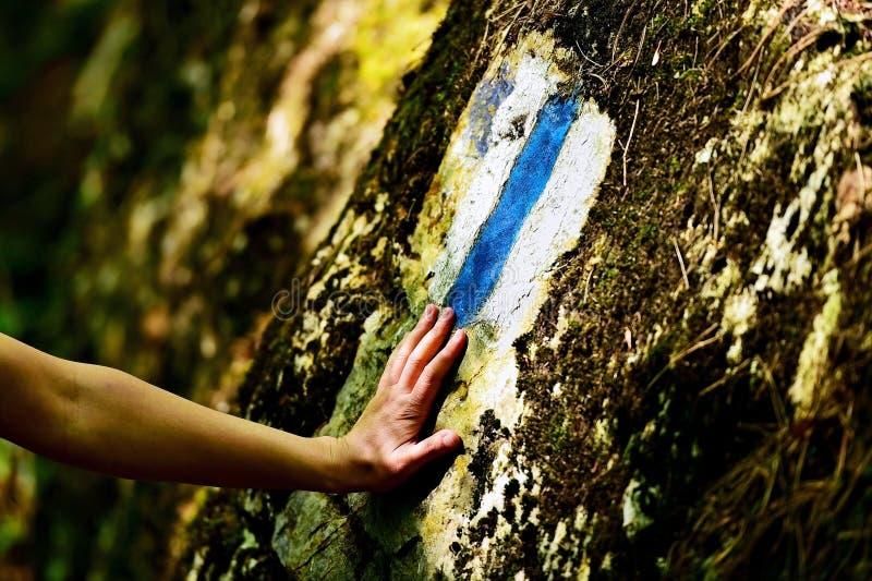 Hausse de l'inscription de peinture sur une traînée images libres de droits