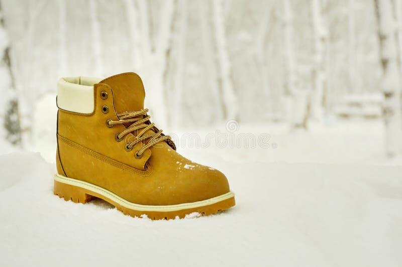 Hausse de la botte dans la neige photographie stock