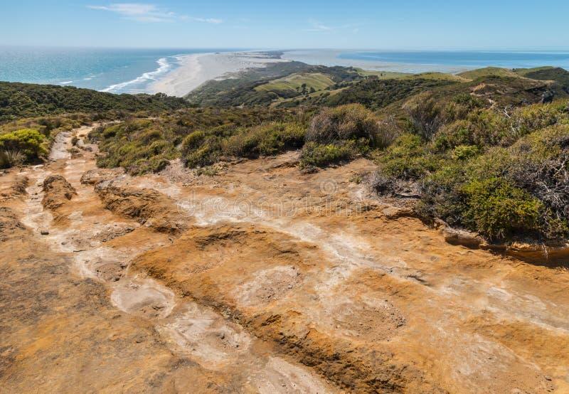 Hausse de la voie à la broche d'adieu, le Nouvelle-Zélande photographie stock libre de droits