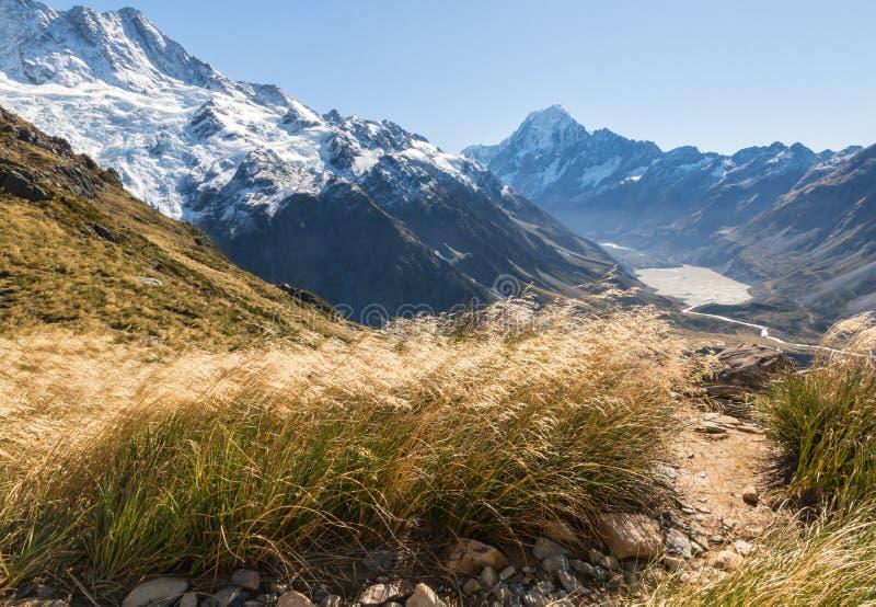 Hausse de la voie dans les Alpes du sud avec la vue de la vallée de cuisinier et de talonneur de Mt dans le cuisinier National Pa photo stock