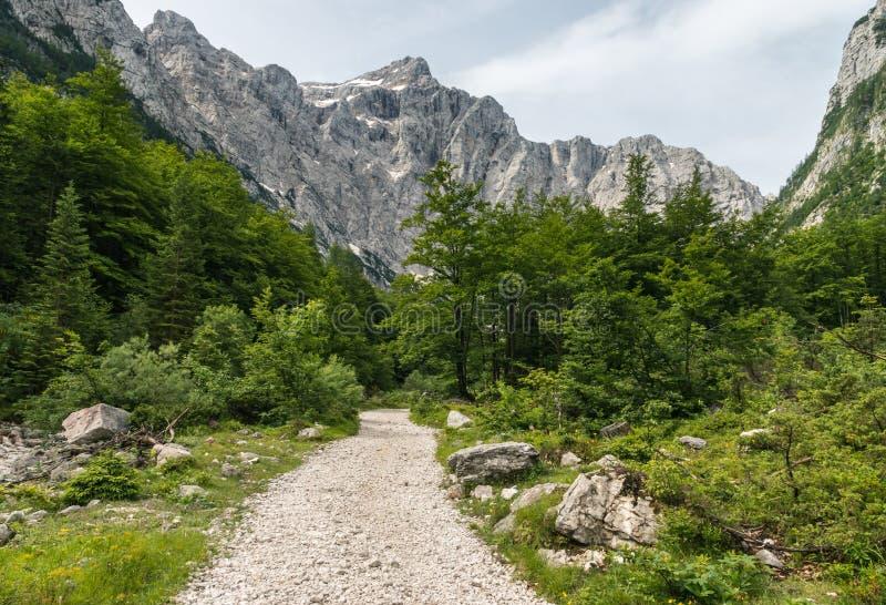 Hausse de la voie en parc national de Triglav, la Slovénie image libre de droits