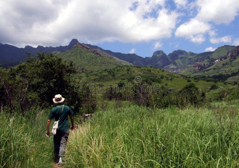 Hausse de montagne en Afrique du Sud photo stock