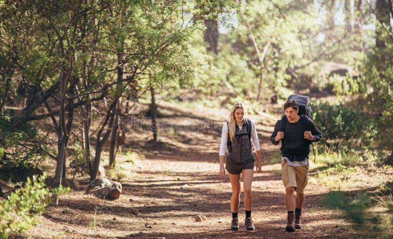 Hausse des couples marchant dans des sacs à dos de port de forêt photographie stock libre de droits