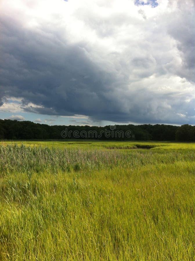 Hausse des nuages de famille d'été en bois image stock