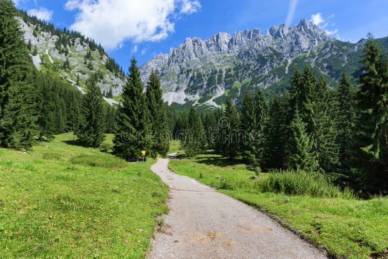 Hausse du chemin à travers le paysage de montagne d'été Kaiser sauvage Caïn ou Wilder Kaiser, Autriche, Tyrol photographie stock libre de droits