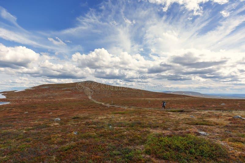 Hausse en été du nord court en Laponie images stock