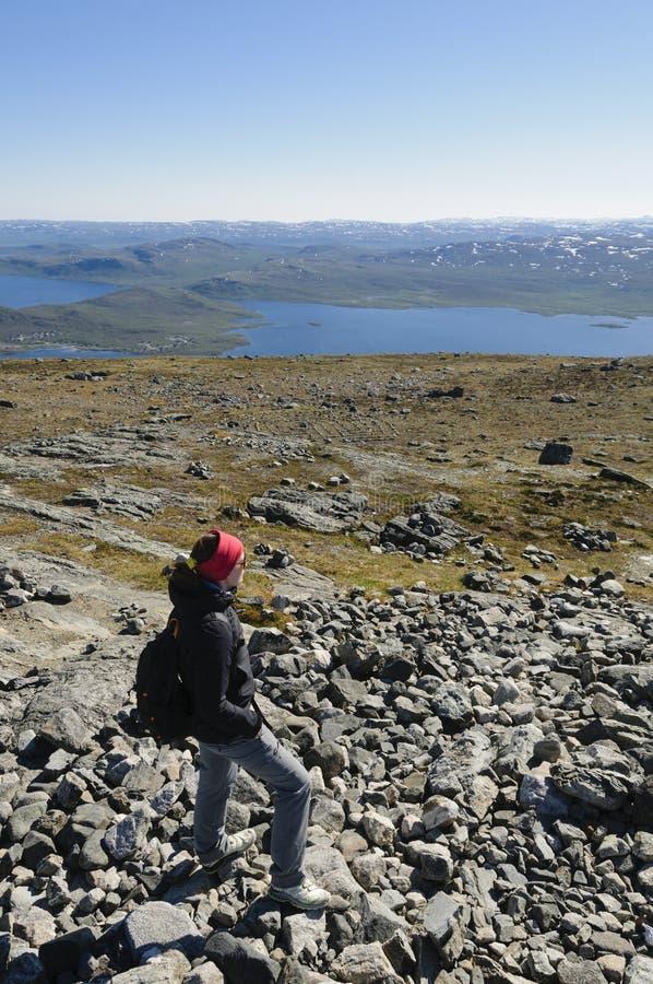 Hausse en Laponie image libre de droits