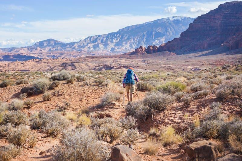 Hausse en Utah images libres de droits