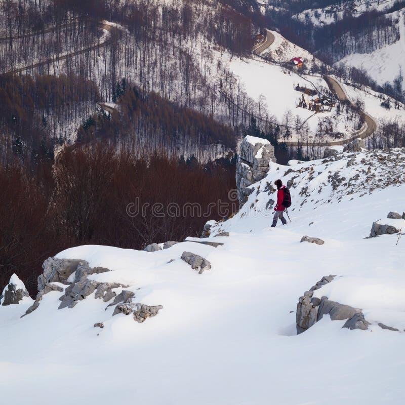 Hausse et chaux d'hiver photographie stock
