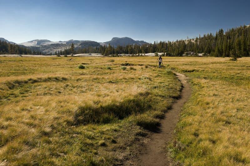 Hausse par le stationnement national de Yosemite photos stock