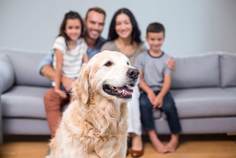 Haustier im Wohnzimmer und Familie, die auf Sofa sitzt lizenzfreie stockfotografie