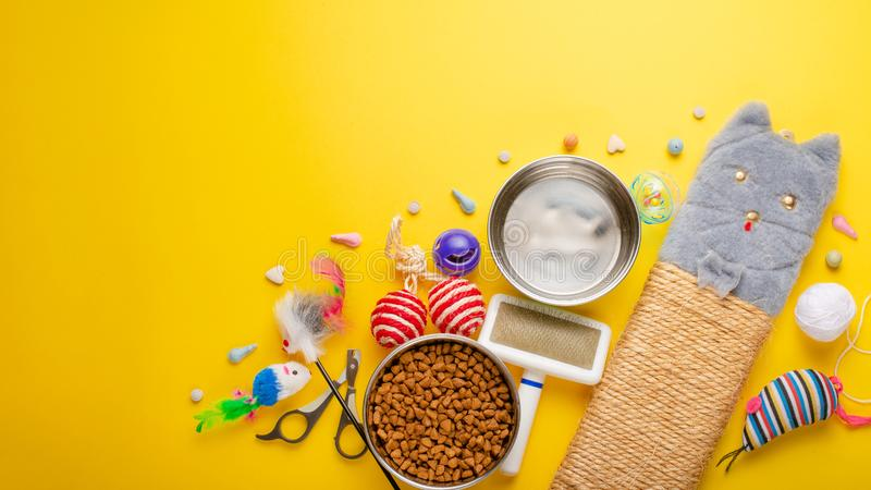 Haustier, Katze, Nahrung und Zusätze der Katze flache Lage, mit Raum für Entwurf, auf einem gelben Hintergrund lebend Fahne, Katz lizenzfreie stockfotos