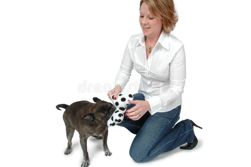 Haustier-Spaß stockfoto