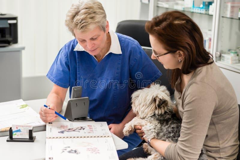 Haustierinhaber, der Anleitung vom weiblichen Tierarzt empfängt lizenzfreies stockbild