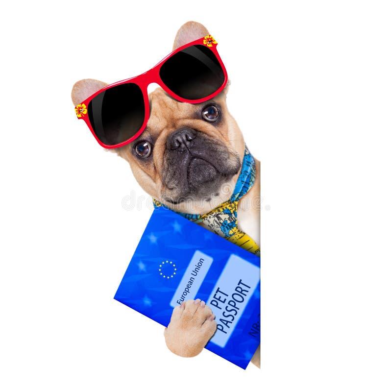 Haustierpaß lizenzfreie stockbilder